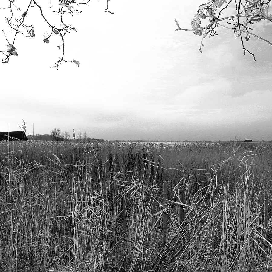 View of distant Horsey Mere with two boatsheds
