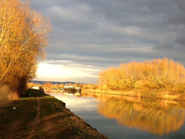 Evening light on canal towpath