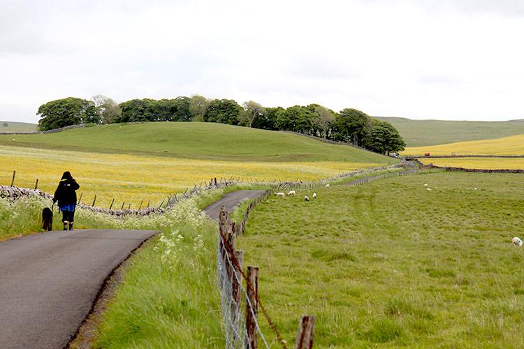 Walking near Malham Tarn