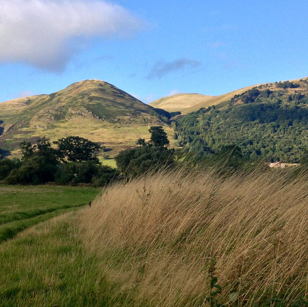 early autumn ochil hills