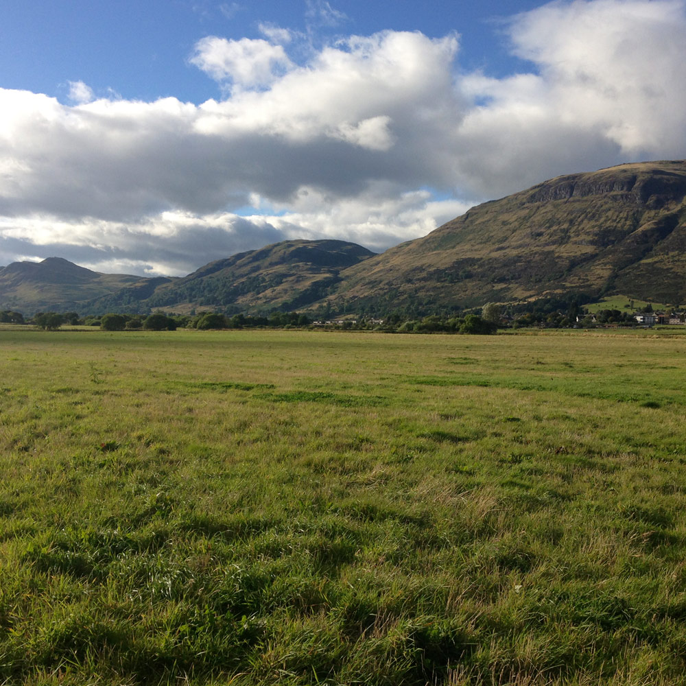 Clackmannonshire meadow